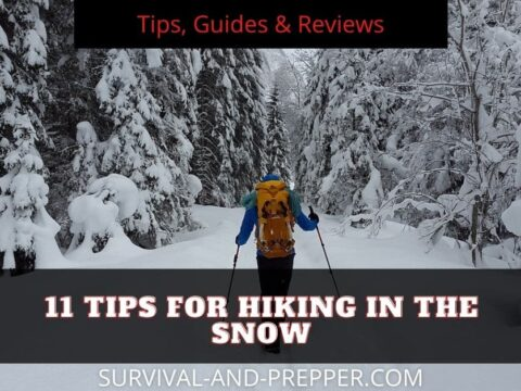 snowy forest with hiker wearing orange and using ski poles