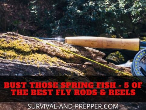 Best fly rods and reels